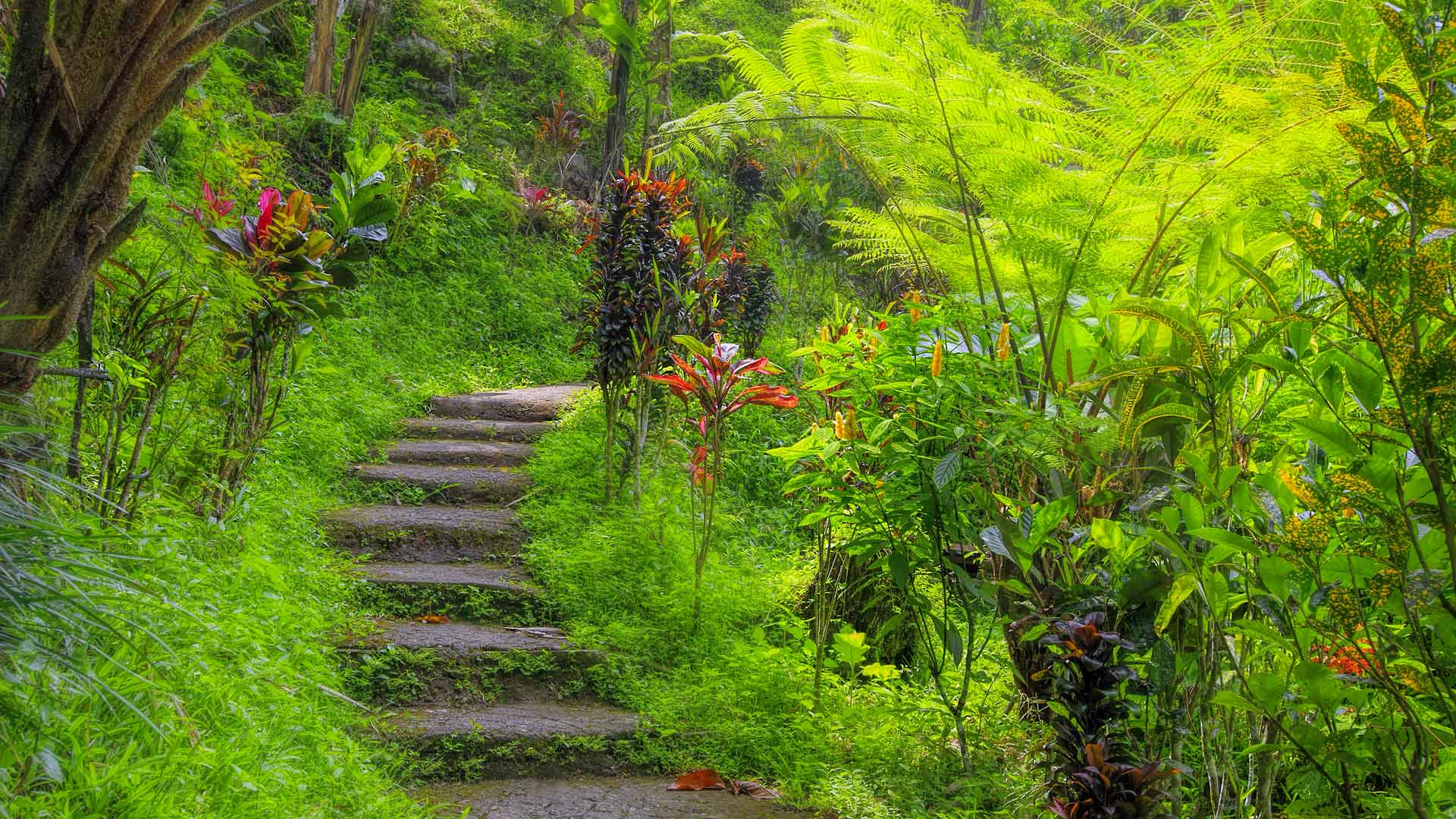 "Bali Marina Villas – "" Hiking, trekking, nature"